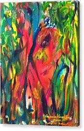 Sumatran Orangutan  Acrylic Print