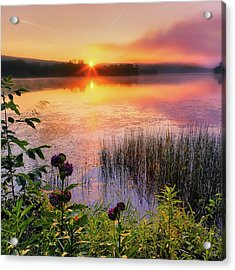 Summer Sunrise Square Acrylic Print by Bill Wakeley