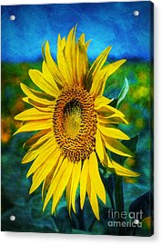 Acrylic Print featuring the digital art Sunflower by Ian Mitchell