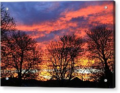Acrylic Print featuring the photograph Sunset And Filigree by Nareeta Martin