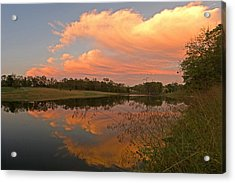 Sunset At The Pond Acrylic Print