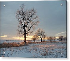 Sunset Over Icy Field Acrylic Print by David Junod