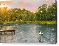 Swan Lake Acrylic Print by Mary Timman
