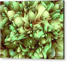 Sweet Flowers Acrylic Print