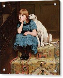 Sympathy Acrylic Print by Briton Riviere