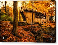 Acrylic Print featuring the photograph Tannery Hill Bridge by Robert Clifford