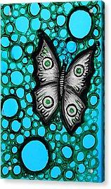 Teal Butterfly Acrylic Print by Brenda Higginson