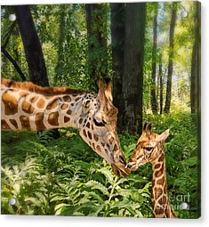 Tender Are The Moments Where Love Embraces Time Acrylic Print