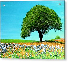 Texas Hill Country Acrylic Print by JoeRay Kelley