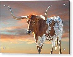 Texas Icon Acrylic Print by Robert Anschutz