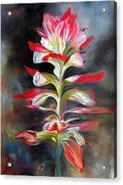 Texas Indian Paintbrush Acrylic Print