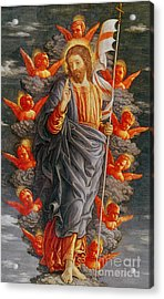 The Ascension Acrylic Print by Andrea Mantegna