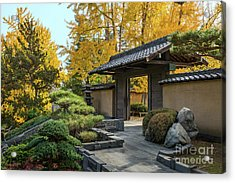 The Beautiful Fall Colors Of The Japanese Gardens Acrylic Print by Jamie Pham