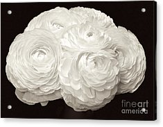 The Brides Bouquet Acrylic Print by Jeannie Rhode