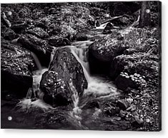 The Creek In Black And White Acrylic Print