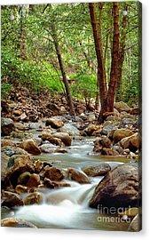 The Creek Acrylic Print by Marc Bittan