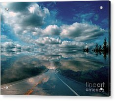 Acrylic Print featuring the photograph The Dream by Elfriede Fulda