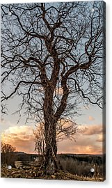 The End Of Another Day Acrylic Print