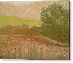 The Fog Bank Acrylic Print by Harvey Rogosin