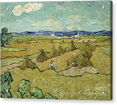 The Haystacks Acrylic Print by Vincent Van Gogh