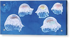The Jellyfish Nursery Acrylic Print by Anne Geddes
