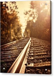 The Journey Acrylic Print by Lisa Russo