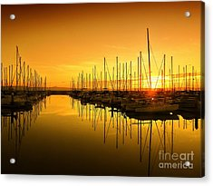 The Marina Acrylic Print by Scott Cameron