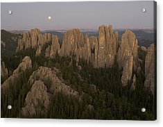 The Needles Protrude From Forests Acrylic Print by Phil Schermeister