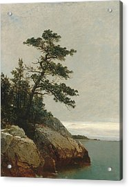 The Old Pine Darien Connecticut Acrylic Print by John Frederick Kensett