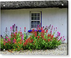 The Old Thatched Home Acrylic Print