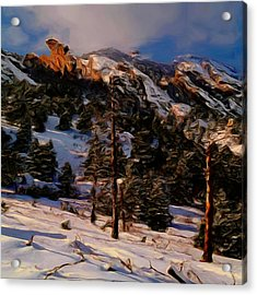 The Pass Acrylic Print by Wayne Bonney