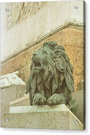 The Queens Lion Acrylic Print by JAMART Photography