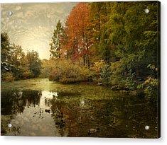 The Wetlands Acrylic Print by Jessica Jenney