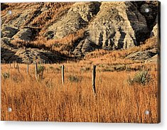 Acrylic Print featuring the photograph This Is Kansas by JC Findley