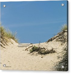 Acrylic Print featuring the photograph This Way To The Beach by Michelle Wiarda