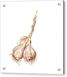 Three Garlics Acrylic Print by Fran Henig