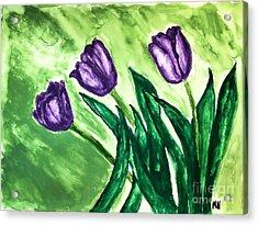 Three Pretty Tulips Acrylic Print