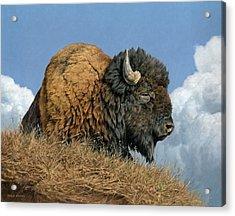 Thunder Beast Acrylic Print