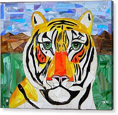 Tiger Acrylic Print by Charles McDonell