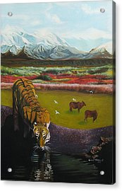 Tiger Acrylic Print by Howard Stroman