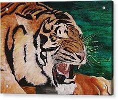 Tiger Paw Acrylic Print