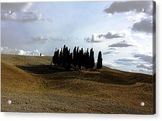 Toscana Acrylic Print by Pat Purdy