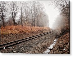 Acrylic Print featuring the photograph Tracks In Morning Fog by Lars Lentz