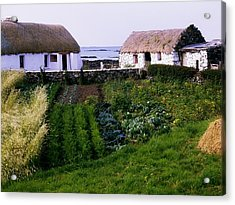 Traditional Cottages, Co Galway, Ireland Acrylic Print by The Irish Image Collection