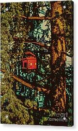 Train Bird House Acrylic Print