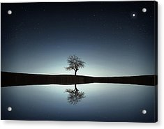 Tree Near Lake At Night Acrylic Print by Bess Hamiti