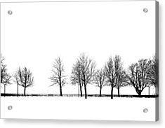 Trees Acrylic Print by Chevy Fleet