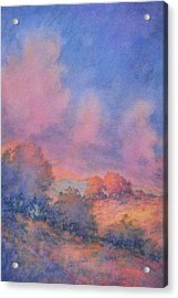 Twilight Time No 1 Acrylic Print by Virgil Carter