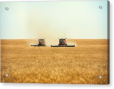 Twin Combines Acrylic Print by Todd Klassy
