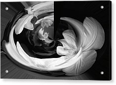 Acrylic Print featuring the photograph Twisted by Wanda Brandon